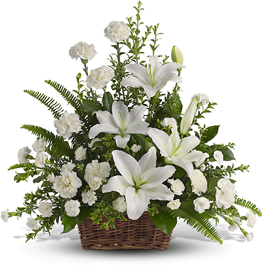 Peaceful White Lillies
