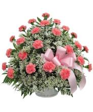 carnations and babiesbreath